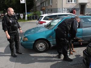 Zoufalý kříženec Dobrmana v červnu vyrazil okénko auta, strážníci jej museli uvolnit z vodítka. Foto: Městská policie Brno