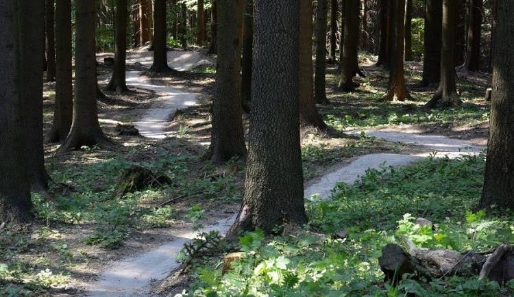 V lesích u Boskovic vzniknou stezky pro cyklisty za 10 mil. Kč