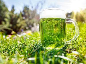 Zelené Pivo, Starobrno