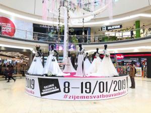 Výstava svatebních šatů ve Vaňkovce