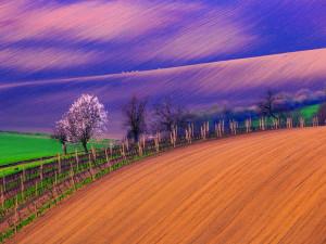Krajina okolo Šardic