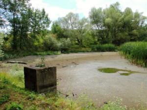 Čížovský malý rybník