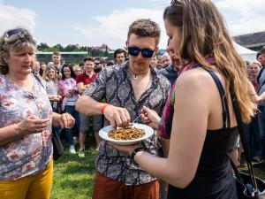 Lidé jedli na Extrem Food Festivalu červičervi