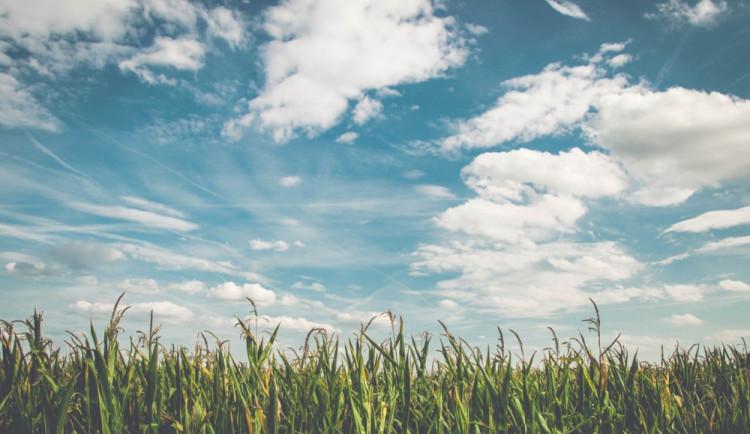 POČASÍ NA PONDĚLÍ: Slunečný den s teplotami okolo pětadvacítky