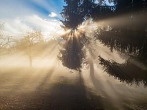 Ojediněle se objeví i mlha