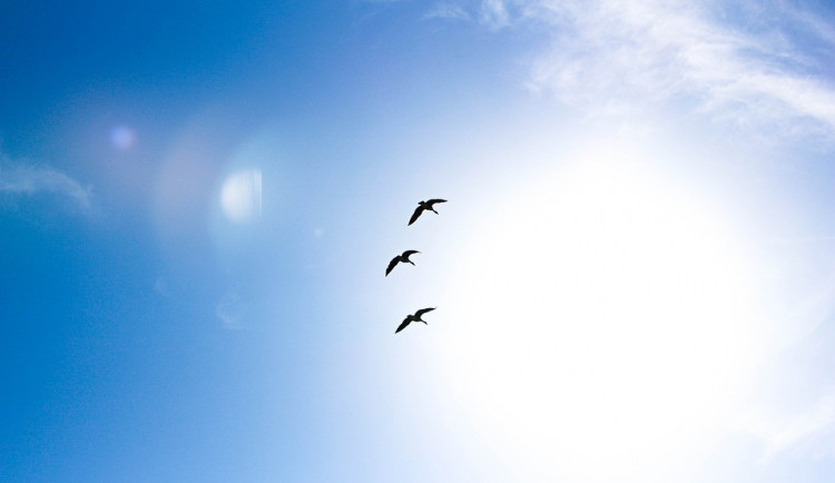 POČASÍ NA SOBOTU: Jasná obloha a teploty nad pětadvacet