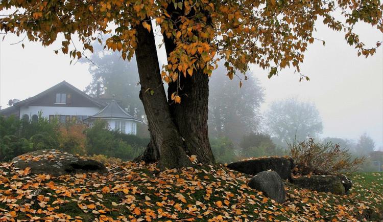 POČASÍ NA PÁTEK: Znovu můžeme očekávat mlhu, přidá se i mírné mrholení